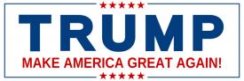 Donald Trump (Bumper Sticker)